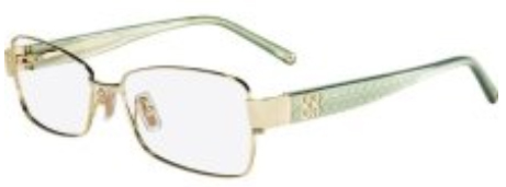 Coach  1009/Louise Eyeglasses